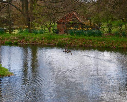 duck pond Swafield Hall