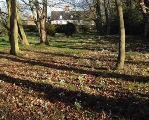 woodlands,Swafield Hall